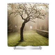 Alone In The Fog Shower Curtain