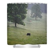 Alone In The Meadow Shower Curtain