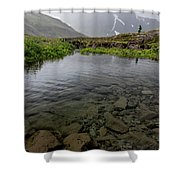 Alone With Nature Shower Curtain