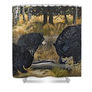 Along An Autumn Path - Black Bear With Cubs Shower Curtain
