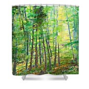 Along Buckslide Road Shower Curtain