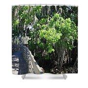 Along Florida Boardwalk Shower Curtain