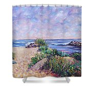 Along The Breachway Rhode Island Shower Curtain