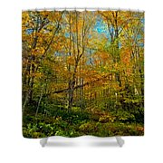 Along The Lock And Dam Trail Shower Curtain