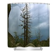 Along The Needles Highway Shower Curtain