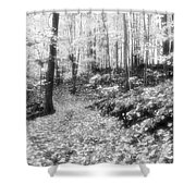 Along The Path Bw  Shower Curtain