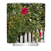 Along The Picket Fence Shower Curtain