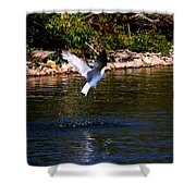 Along The Shoreline Shower Curtain