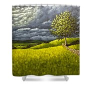 Along The Stone Wall Shower Curtain