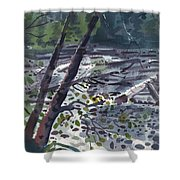 Along The White River Shower Curtain