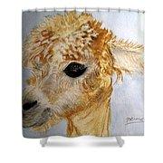 Alpaca Cutie Shower Curtain
