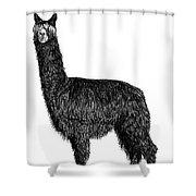 Alpaca Fine Art Shower Curtain