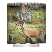 Alpaca Glory Shower Curtain