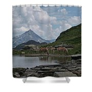 Alps' Horses Shower Curtain