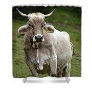 Alpine Cow Shower Curtain