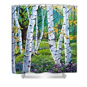 Alpine Flowers And Birches  Shower Curtain