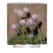 Alpine Flowers Shower Curtain