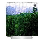 Alpine Forest Shower Curtain