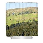 Alpine Forest Landscape.  Shower Curtain