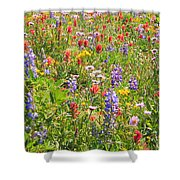 Alpine Glory In Canada Shower Curtain