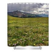Alpine Meadow Before Mount Guyot Shower Curtain