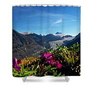 Alpine Meadow Flowers Overlooking Glacier Shower Curtain