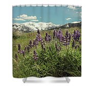 Alpine Spring Shower Curtain