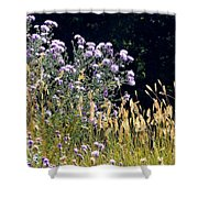 Alpine Thistles And Grasses Shower Curtain