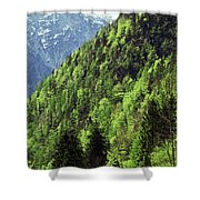 Alpine View In Green Shower Curtain