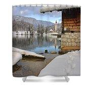 Alpine Winter Clarity Shower Curtain