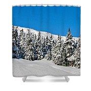 Alpine Winter Shower Curtain