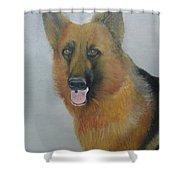 alsheshan Dog  Shower Curtain