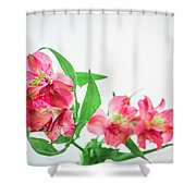 Alstromeria 1 2017 Shower Curtain