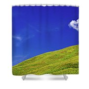 Altai Shower Curtain