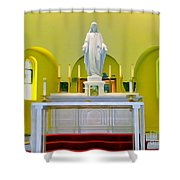 Altered Altar Shower Curtain