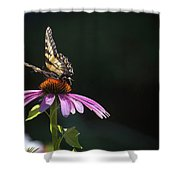 Always June Shower Curtain