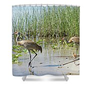 Always Together Shower Curtain