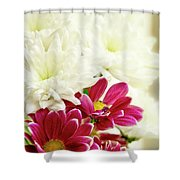 Always With You. Shower Curtain