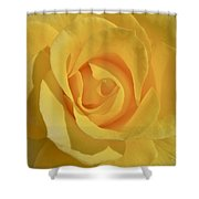 Amarillo Shower Curtain