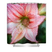 Amaryllis And Tree Frog Painted  Shower Curtain
