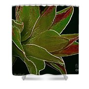 Amaryllis Art Shower Curtain