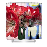 Amaryllis Fantasy Shower Curtain