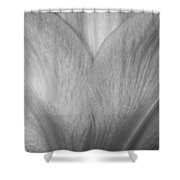Amaryllis Flower Petals In Black And White Shower Curtain