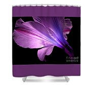 Amaryllis Glow Shower Curtain