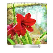Amaryllis On  The Porch Shower Curtain