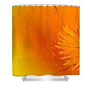 Amazing Colors Shower Curtain