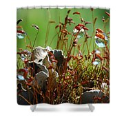 Amazing Jungle Of The Microcosm Shower Curtain