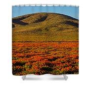 Amazing Poppy Fields Shower Curtain
