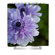Amazing Purple Shower Curtain