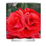 Amazing Rose Shower Curtain